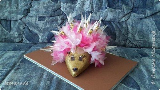 Здравствуйте мастра и мастерицы, хочу поделиться с вами созданием своего красочного ёжика, за вдохновение  спасибо Светлане и её МК http://stranamasterov.ru/node/229835. фото 2