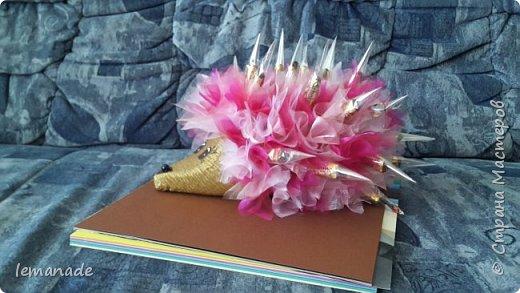Здравствуйте мастра и мастерицы, хочу поделиться с вами созданием своего красочного ёжика, за вдохновение  спасибо Светлане и её МК http://stranamasterov.ru/node/229835. фото 3