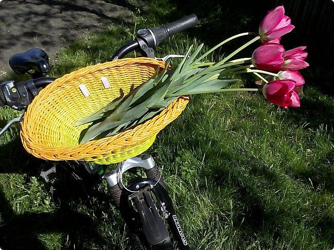 Горшочек.цвети!!! фото 4