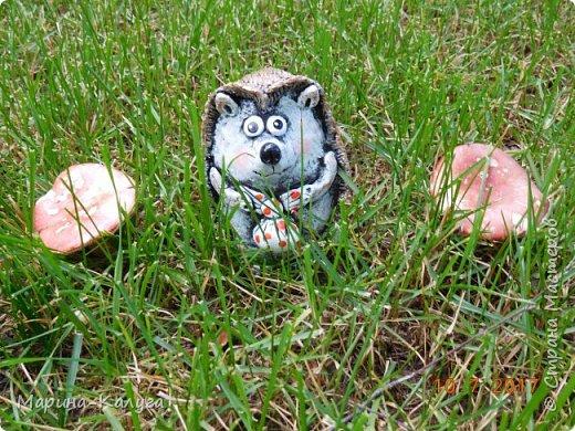 Всем доброго времени суток!Встречайте дальнего родственника ёжиков Оксаны Шлёнской.Безумно нравятся папьешки Оксаны!И вот он- немного кривенький, но всё равно милый ёжик,сделанный по её МК. фото 8