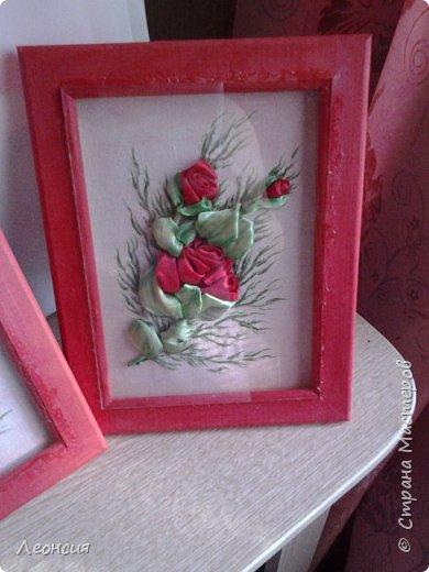 Розы. фото 1