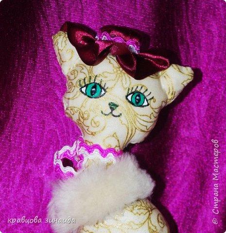 Добрый день моя любимая СТРАНА МАСТЕРОВ , сегодня я к вам со своими любимыми кисками , шьются не сложно , а смотрятся красиво , как статуэточки . 1. Первая в розовой шляпке фото 4