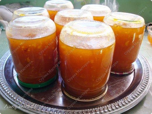 В последнее время наша семья полюбила абрикосовое варенье. В этом году решила поэкспериментировать со вкусами. Идея с апельсинами принадлежит моему мужу. Да, идея не авторская, но тем-не-менее. Результат нас впечатлил - очень ароматное, оригинальное сочетание вкусов.  Любителям апельсинов и абрикосов посвящается :) фото 7