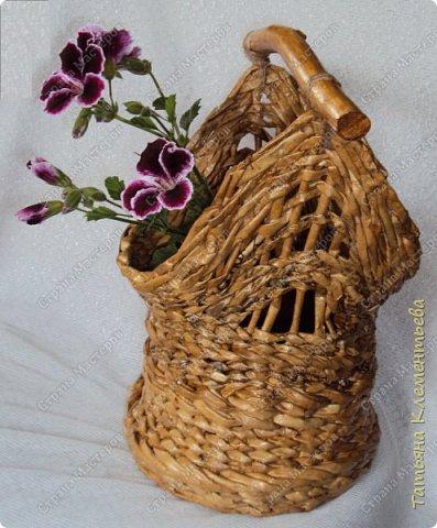 Яблоневых ручек для плетёных корзин заготовила много. Прижилась английская герань в маленьких баночках и назрела необходимость сплести ещё корзину. Корзина защищает баночку, а значит и корни растения от перегревания на солнце. Дно плету на основе сотового поликарбоната, который остался от постройки теплицы. Как плести такое дно можно посмотреть здесь  http://stranamasterov.ru/node/596573  фото 2