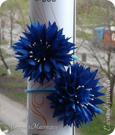 Василечки -  мои любимые цветочки. фото 7