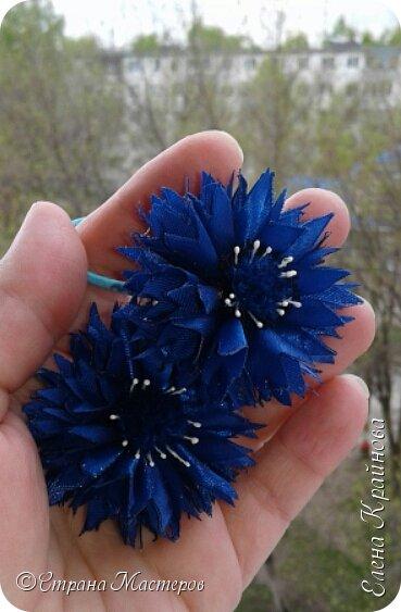 Василечки -  мои любимые цветочки. фото 1