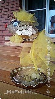 Денежная золотая рыбка.  фото 2