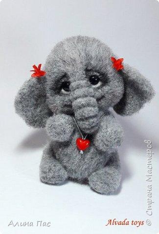 Слоняша Куки фото 1