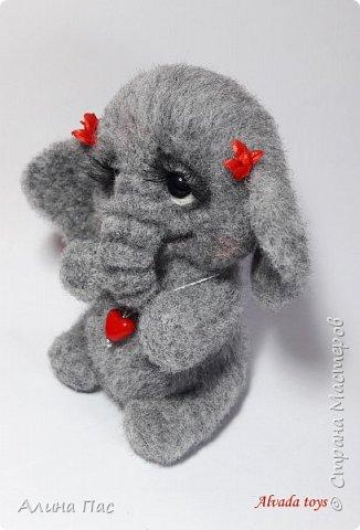 Слоняша Куки фото 3