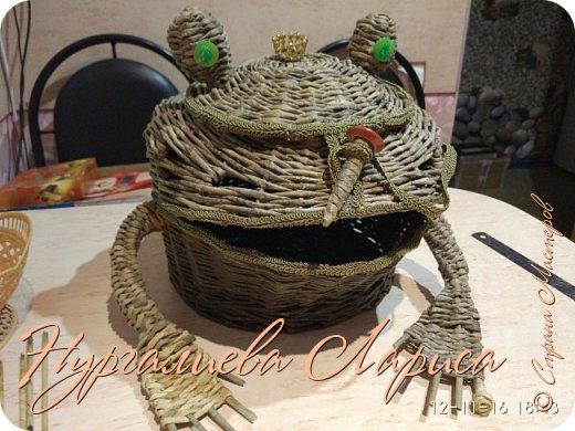 Лягушка-лучница фото 1