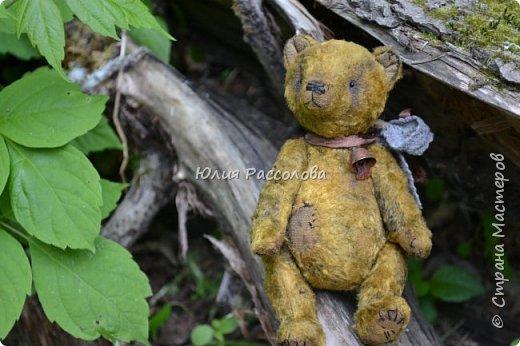 ..по страницам сказок, мишка-тедди, плюшевый мишка фото 5