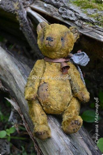 ..по страницам сказок, мишка-тедди, плюшевый мишка фото 1
