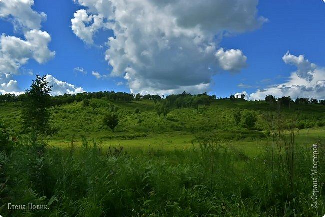 Доброго времени суток, жители Страны Мастеров. Приглашаю вас прогуляться по лесу. Запасаемся чаем, бутербродами и обязательно кремом от комаров и мошки. Пошли. фото 23
