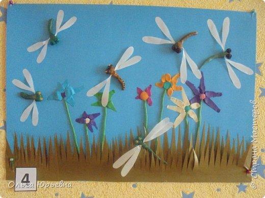 Вот и закончилась неделя насекомых. Некоторые итоги. фото 3