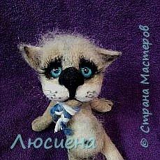 Котик из натуральной шерсти фото 1