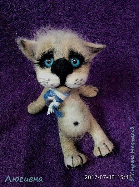 Котик из натуральной шерсти фото 3
