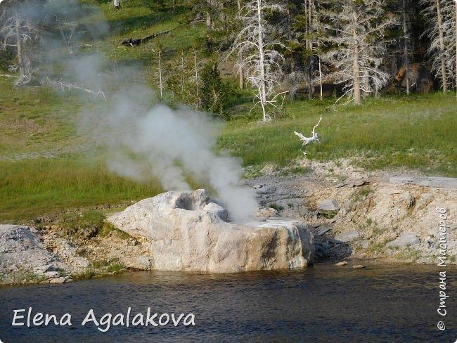 Хочу поделится впечатлениями от поездки в Йе́ллоустон (Yellowstone National Park)— международный биосферный заповедник, объект Всемирного Наследия ЮНЕСКО, первый в мире национальный парк (основан 1 марта 1872 года).  Находится в США, на территории штатов Вайоминг, Монтана и Айдахо.  Парк знаменит многочисленными гейзерами и другими геотермическими объектами, богатой живой природой, живописными ландшафтами.  ( взято из Википедии ) Мы останавливались в кемпингах в палатках. Парк произвел на нас огромное впечатление. Очень хочется поделится с вами красотой которую я увидела.  фото 27