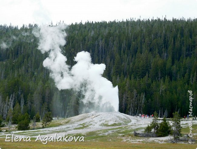 Хочу поделится впечатлениями от поездки в Йе́ллоустон (Yellowstone National Park)— международный биосферный заповедник, объект Всемирного Наследия ЮНЕСКО, первый в мире национальный парк (основан 1 марта 1872 года).  Находится в США, на территории штатов Вайоминг, Монтана и Айдахо.  Парк знаменит многочисленными гейзерами и другими геотермическими объектами, богатой живой природой, живописными ландшафтами.  ( взято из Википедии ) Мы останавливались в кемпингах в палатках. Парк произвел на нас огромное впечатление. Очень хочется поделится с вами красотой которую я увидела.  фото 21