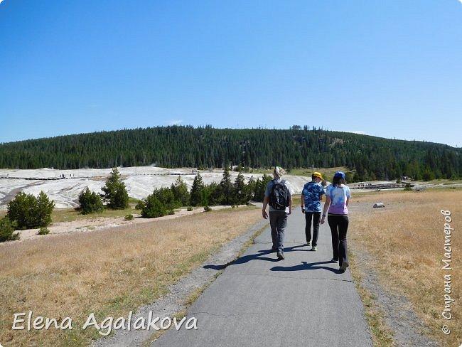 Хочу поделится впечатлениями от поездки в Йе́ллоустон (Yellowstone National Park)— международный биосферный заповедник, объект Всемирного Наследия ЮНЕСКО, первый в мире национальный парк (основан 1 марта 1872 года).  Находится в США, на территории штатов Вайоминг, Монтана и Айдахо.  Парк знаменит многочисленными гейзерами и другими геотермическими объектами, богатой живой природой, живописными ландшафтами.  ( взято из Википедии ) Мы останавливались в кемпингах в палатках. Парк произвел на нас огромное впечатление. Очень хочется поделится с вами красотой которую я увидела.  фото 4