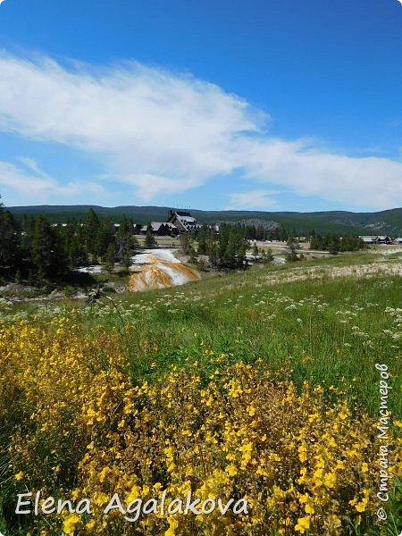 Хочу поделится впечатлениями от поездки в Йе́ллоустон (Yellowstone National Park)— международный биосферный заповедник, объект Всемирного Наследия ЮНЕСКО, первый в мире национальный парк (основан 1 марта 1872 года).  Находится в США, на территории штатов Вайоминг, Монтана и Айдахо.  Парк знаменит многочисленными гейзерами и другими геотермическими объектами, богатой живой природой, живописными ландшафтами.  ( взято из Википедии ) Мы останавливались в кемпингах в палатках. Парк произвел на нас огромное впечатление. Очень хочется поделится с вами красотой которую я увидела.  фото 12