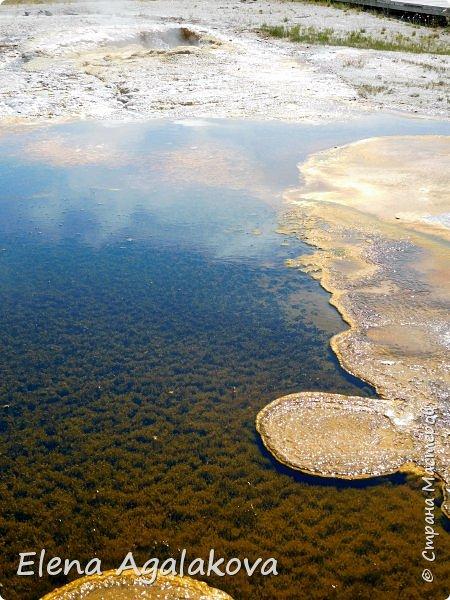 Хочу поделится впечатлениями от поездки в Йе́ллоустон (Yellowstone National Park)— международный биосферный заповедник, объект Всемирного Наследия ЮНЕСКО, первый в мире национальный парк (основан 1 марта 1872 года).  Находится в США, на территории штатов Вайоминг, Монтана и Айдахо.  Парк знаменит многочисленными гейзерами и другими геотермическими объектами, богатой живой природой, живописными ландшафтами.  ( взято из Википедии ) Мы останавливались в кемпингах в палатках. Парк произвел на нас огромное впечатление. Очень хочется поделится с вами красотой которую я увидела.  фото 8