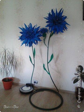 Здравствуйте. Хочу поделиться своими ростовыми васильками из фоамирана. фото 10