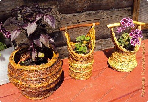 Корзинки из газетных трубочек хорошо защищают цветочный горшок, стоящий на ярком солнце, от перегревания. Очеpедная плетёнка с дном из сотового поликарбоната, который остался от установки огородной теплицы. фото 6