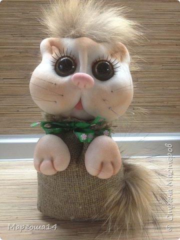Привет,Страна Мастеров!!! Показываю сегодня котиков в мешочках,которых сшила по МК Марии Лариной. Я уже шила их раньше. У новых котиков я решила добавить хвосты. И вот ,что получилось.Первая кошечка ,очень нежная ))) фото 2