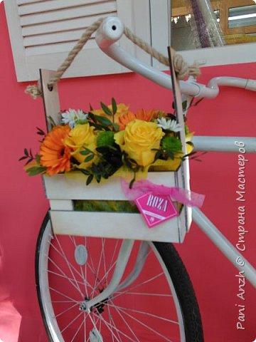 ...Я буду долго гнать велосипед)) фото 8