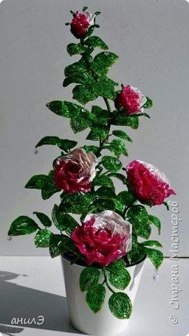 Кустик с розами фото 1