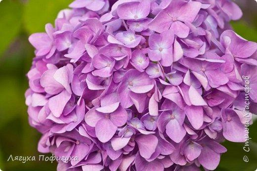 Подвеска, кольцо и серьги с мелкими цветочками сиреневых оттенков, украшено натуральными самоцветами. фото 4