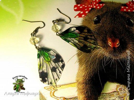 Нежные крылышки бабочки колыхаются на ветру как мотыльки... Свет свободно проходит сквозь них, играя зелеными лучиками.  фото 1