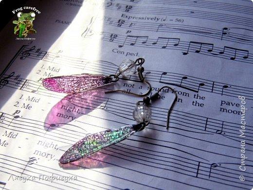 Нежные крылышки бабочки колыхаются на ветру как мотыльки... Свет свободно проходит сквозь них, играя зелеными лучиками.  фото 4