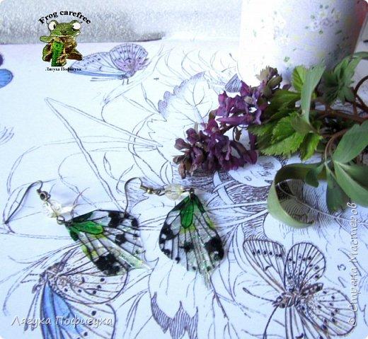 Нежные крылышки бабочки колыхаются на ветру как мотыльки... Свет свободно проходит сквозь них, играя зелеными лучиками.  фото 5