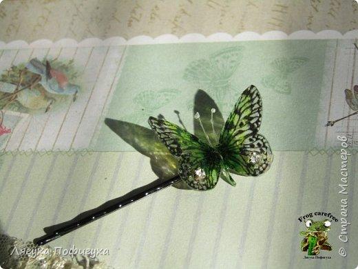 Нежные крылышки бабочки колыхаются на ветру как мотыльки... Свет свободно проходит сквозь них, играя зелеными лучиками.  фото 6
