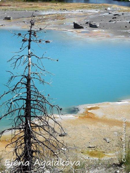 Продолжаю делится впечатлениями от поездки в Йе́ллоустон (Yellowstone National Park)— международный биосферный заповедник, объект Всемирного Наследия ЮНЕСКО, первый в мире национальный парк (основан 1 марта 1872 года). Находится в США, на территории штатов Вайоминг, Монтана и Айдахо. Парк знаменит многочисленными гейзерами и другими геотермическими объектами, богатой живой природой, живописными ландшафтами. ( взято из Википедии ) Мы останавливались в кемпингах в палатках. Парк произвел на нас огромное впечатление. Очень хочется поделится с вами красотой которую я увидела.  В один фоторепортаж трудно вместить все увиденное.  фото 19