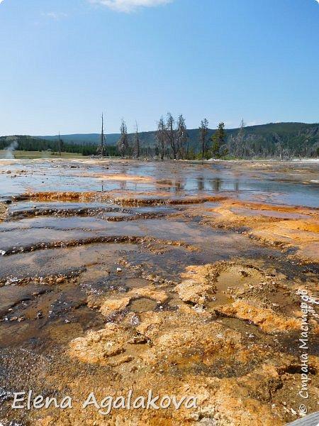Продолжаю делится впечатлениями от поездки в Йе́ллоустон (Yellowstone National Park)— международный биосферный заповедник, объект Всемирного Наследия ЮНЕСКО, первый в мире национальный парк (основан 1 марта 1872 года). Находится в США, на территории штатов Вайоминг, Монтана и Айдахо. Парк знаменит многочисленными гейзерами и другими геотермическими объектами, богатой живой природой, живописными ландшафтами. ( взято из Википедии ) Мы останавливались в кемпингах в палатках. Парк произвел на нас огромное впечатление. Очень хочется поделится с вами красотой которую я увидела.  В один фоторепортаж трудно вместить все увиденное.  фото 20