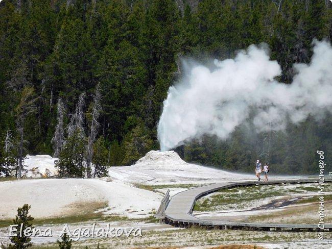 Продолжаю делится впечатлениями от поездки в Йе́ллоустон (Yellowstone National Park)— международный биосферный заповедник, объект Всемирного Наследия ЮНЕСКО, первый в мире национальный парк (основан 1 марта 1872 года). Находится в США, на территории штатов Вайоминг, Монтана и Айдахо. Парк знаменит многочисленными гейзерами и другими геотермическими объектами, богатой живой природой, живописными ландшафтами. ( взято из Википедии ) Мы останавливались в кемпингах в палатках. Парк произвел на нас огромное впечатление. Очень хочется поделится с вами красотой которую я увидела.  В один фоторепортаж трудно вместить все увиденное.  фото 30