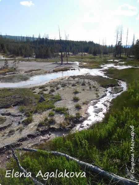 Продолжаю делится впечатлениями от поездки в Йе́ллоустон (Yellowstone National Park)— международный биосферный заповедник, объект Всемирного Наследия ЮНЕСКО, первый в мире национальный парк (основан 1 марта 1872 года). Находится в США, на территории штатов Вайоминг, Монтана и Айдахо. Парк знаменит многочисленными гейзерами и другими геотермическими объектами, богатой живой природой, живописными ландшафтами. ( взято из Википедии ) Мы останавливались в кемпингах в палатках. Парк произвел на нас огромное впечатление. Очень хочется поделится с вами красотой которую я увидела.  В один фоторепортаж трудно вместить все увиденное.  фото 33