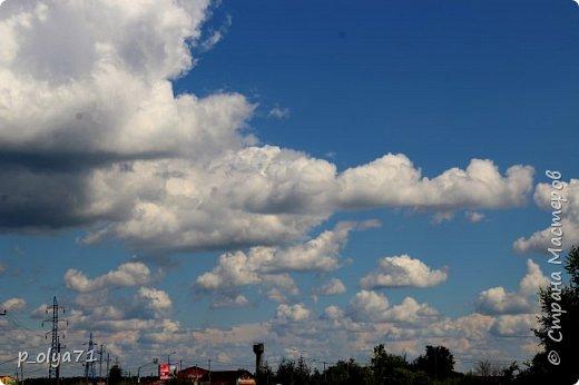 Здравствуйте,мои дорогие!!! Спешу поделиться новой порцией позитива)) В пятницу,21.07.17, прошёл дождь и я вышла в огород с фотоаппаратом)) Капли на диком(девичий)винограде фото 39