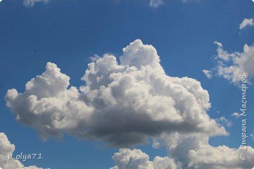 Здравствуйте,мои дорогие!!! Спешу поделиться новой порцией позитива)) В пятницу,21.07.17, прошёл дождь и я вышла в огород с фотоаппаратом)) Капли на диком(девичий)винограде фото 40