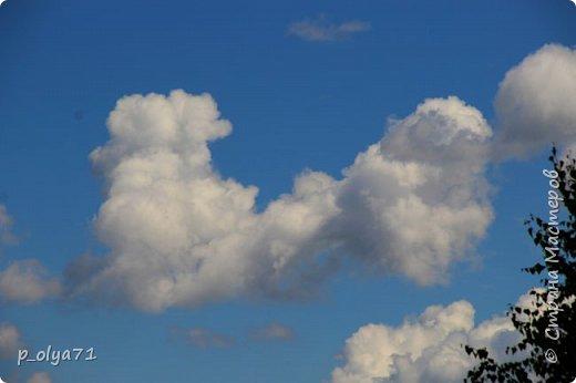 Здравствуйте,мои дорогие!!! Спешу поделиться новой порцией позитива)) В пятницу,21.07.17, прошёл дождь и я вышла в огород с фотоаппаратом)) Капли на диком(девичий)винограде фото 41