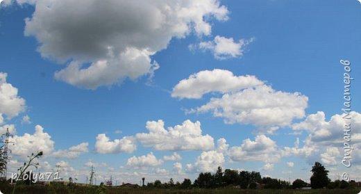 Здравствуйте,мои дорогие!!! Спешу поделиться новой порцией позитива)) В пятницу,21.07.17, прошёл дождь и я вышла в огород с фотоаппаратом)) Капли на диком(девичий)винограде фото 43