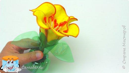 Как Сделать Своими Руками Цветок из Фоамирана и Пластиковых Бутылок