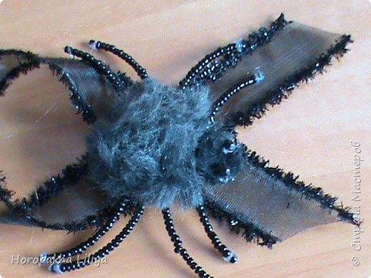 Хеллоуинский паучек фото 2