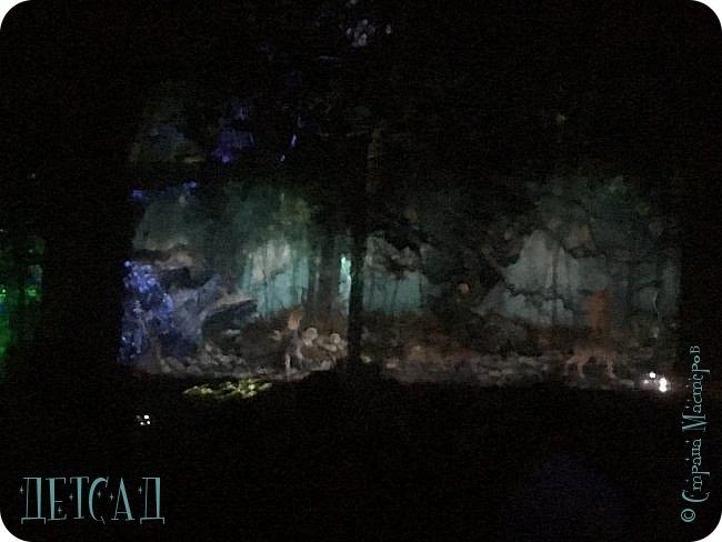 """Каждый день, после захода солнца вокруг пруда парка """"Останкино"""" оживает «Волшебный лес», созданный лучшими художниками световых инсталляций из Европы и России.  фото 4"""