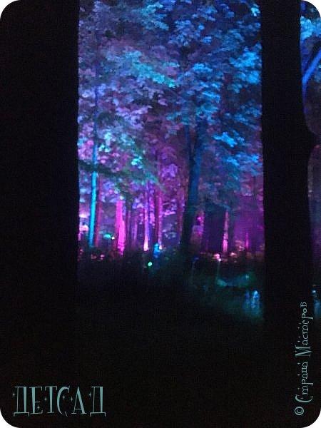 """Каждый день, после захода солнца вокруг пруда парка """"Останкино"""" оживает «Волшебный лес», созданный лучшими художниками световых инсталляций из Европы и России.  фото 5"""