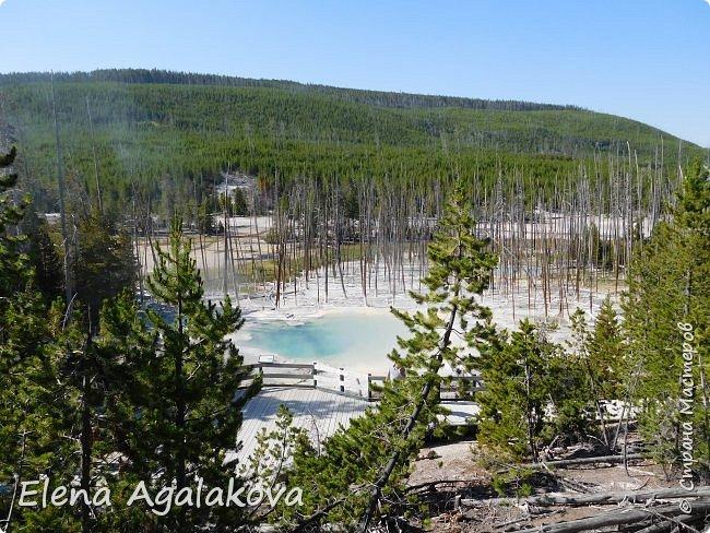 Продолжаю делится впечатлениями от поездки в Йе́ллоустон (Yellowstone National Park)— международный биосферный заповедник, объект Всемирного Наследия ЮНЕСКО, первый в мире национальный парк (основан 1 марта 1872 года). Находится в США, на территории штатов Вайоминг, Монтана и Айдахо. Парк знаменит многочисленными гейзерами и другими геотермическими объектами, богатой живой природой, живописными ландшафтами. ( взято из Википедии )  Мы останавливались в кемпингах в палатках. Парк произвел на нас огромное впечатление. Очень хочется поделится с вами красотой которую я увидела. В один фоторепортаж трудно вместить все увиденное поэтому это уже третий и будут еще...  фото 4