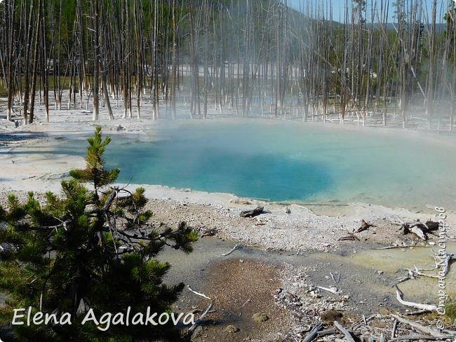 Продолжаю делится впечатлениями от поездки в Йе́ллоустон (Yellowstone National Park)— международный биосферный заповедник, объект Всемирного Наследия ЮНЕСКО, первый в мире национальный парк (основан 1 марта 1872 года). Находится в США, на территории штатов Вайоминг, Монтана и Айдахо. Парк знаменит многочисленными гейзерами и другими геотермическими объектами, богатой живой природой, живописными ландшафтами. ( взято из Википедии )  Мы останавливались в кемпингах в палатках. Парк произвел на нас огромное впечатление. Очень хочется поделится с вами красотой которую я увидела. В один фоторепортаж трудно вместить все увиденное поэтому это уже третий и будут еще...  фото 5