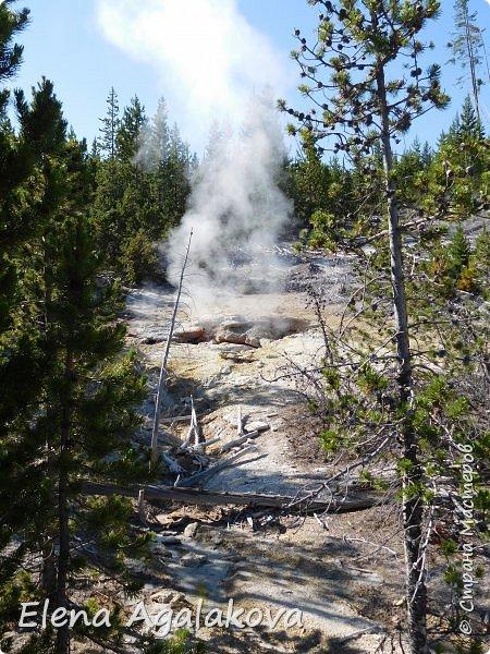 Продолжаю делится впечатлениями от поездки в Йе́ллоустон (Yellowstone National Park)— международный биосферный заповедник, объект Всемирного Наследия ЮНЕСКО, первый в мире национальный парк (основан 1 марта 1872 года). Находится в США, на территории штатов Вайоминг, Монтана и Айдахо. Парк знаменит многочисленными гейзерами и другими геотермическими объектами, богатой живой природой, живописными ландшафтами. ( взято из Википедии )  Мы останавливались в кемпингах в палатках. Парк произвел на нас огромное впечатление. Очень хочется поделится с вами красотой которую я увидела. В один фоторепортаж трудно вместить все увиденное поэтому это уже третий и будут еще...  фото 9